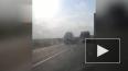 В Краснодарском крае в страшной аварии погибли 9 человек