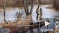 Деда Мазая с зайцами спасли от наводнения в Комсомольске...