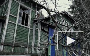 """""""Дача Фандорина"""" под Зеленогорском разрушается. За нее борются краеведы и писатель Акунин"""