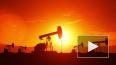 Цена нефти марки Brent упала ниже 25 долларов за баррель